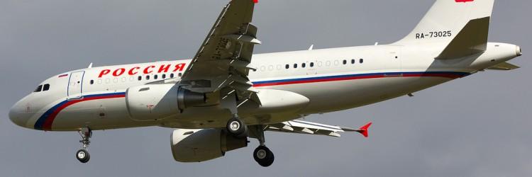Пчёлы атаковали Airbus A319 во Внуково Самолёт Airbus A319 авиакомпании Россия
